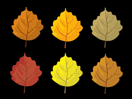 Set of colorful autumn leaves. Cartoon and flat style leafs. Black background. Vector illustration. Illustration