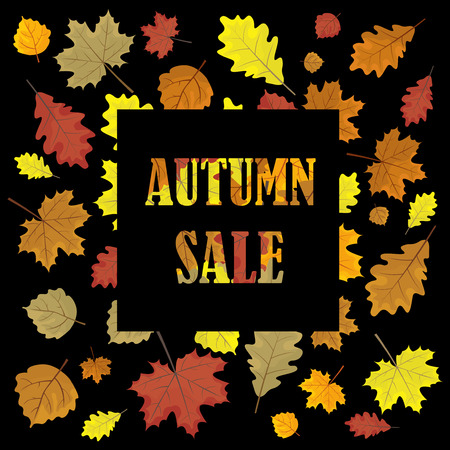 round shape: Sales banner with autumn leaves. Leafs in season vector sale design panel. Vector illustration. Black background.