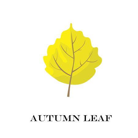 autumn leaves isolated on white background. simple cartoon flat style, vector illustration.