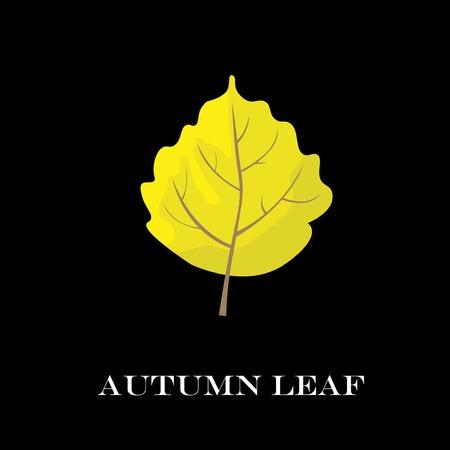 chokeberry: autumn leaves isolated on black background. simple cartoon flat style, vector illustration.