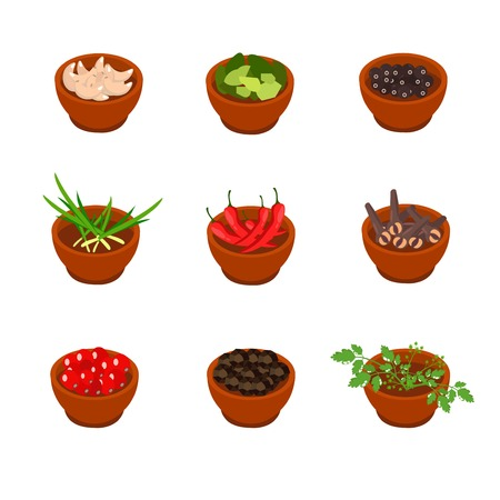 flavorful: Isometric and cartoon style flavorful spices and condiments icon. Vector illustration. White background.