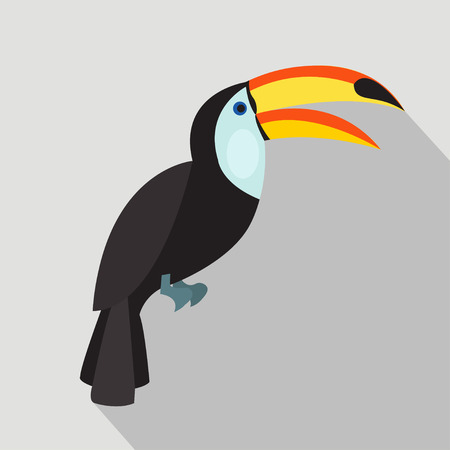 Toucan cartoon flat icon. Brazil. Vector illustration