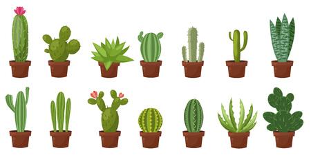 Horizontal banner set of desert, room green cactus. Flat, cartoon style. Vector illustration white background. Element design