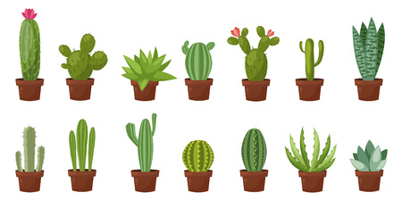 Horizontal banner set of desert, room green cactus. Flat, cartoon style. Vector illustration white background. Element design