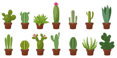 Horizontal banner set of desert, room green cactus. Flat, cartoon style. Imagens