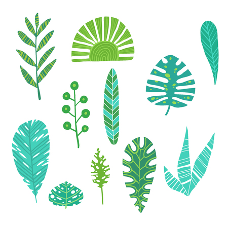 Tropical leaves summer jungle green palm leaf exotic design hawaii monstera botanical flora vector illustration.