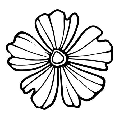 Daisy petal flower icon. Hand drawn illustration of daisy petal flower vector icon for web design Ilustração