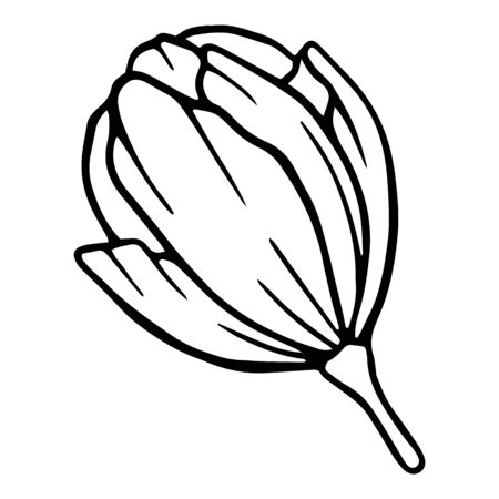 Ceremony blossom peony flower icon. Hand drawn illustration of ceremony blossom peony flower vector icon for web design
