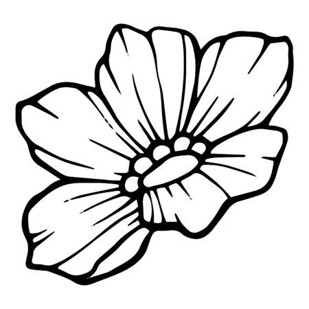 Blossom garden flower icon. Hand drawn illustration of blossom garden flower vector icon for web design Ilustração