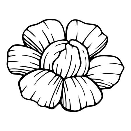 Summer garden peony flower icon. Hand drawn illustration of summer garden peony flower vector icon for web design