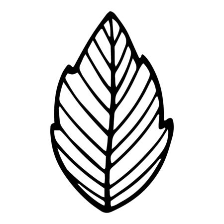 Fresh eco plant leaf icon. Hand drawn illustration of fresh eco plant leaf vector icon for web design