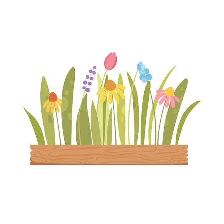 Garden flower wood pot icon. Cartoon of garden flower wood pot vector icon for web design isolated on white background