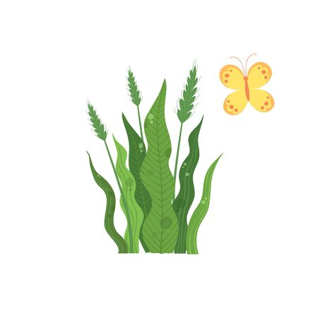 Green wheat plant near colorful butterfly icon. Cartoon of green wheat plant near colorful butterfly vector icon for web design isolated on white background Illustration