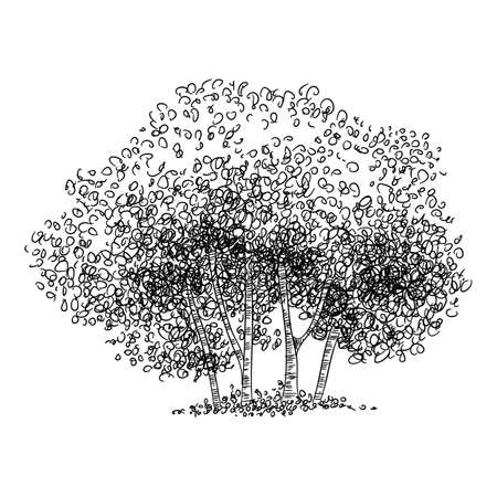 Group of tree icon, hand drawn and outline style 向量圖像