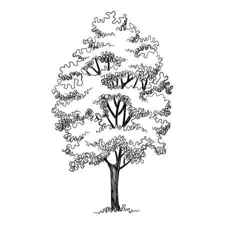 High tree icon, hand drawn and outline style