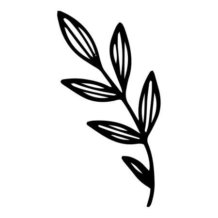Field leaf branch icon, hand drawn and outline style 矢量图像