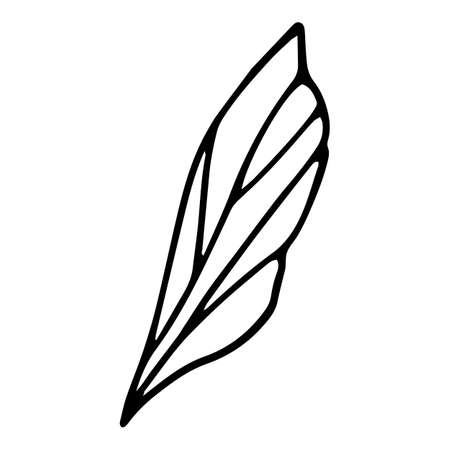 Forest leaf icon, hand drawn and outline style