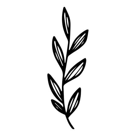 Farm leaf branch icon, hand drawn and outline style