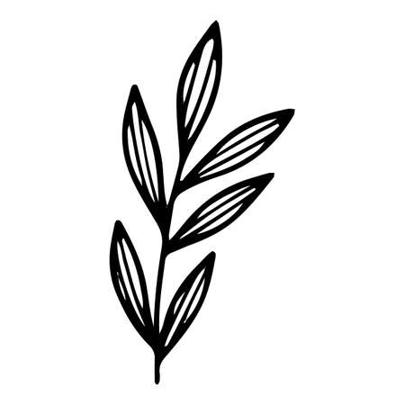 Eco leaf branch icon, hand drawn and outline style