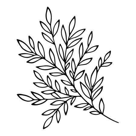 Tree branch icon, hand drawn and outline style 矢量图像