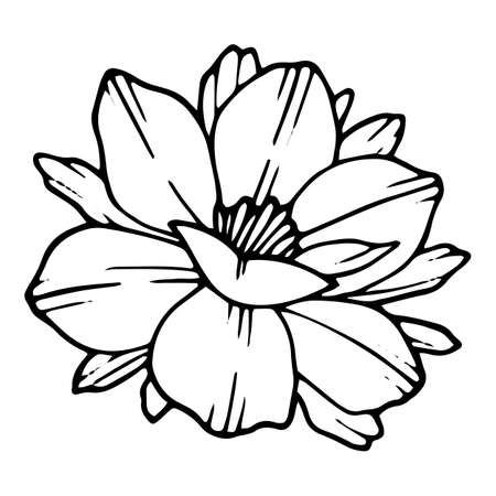 Park poppy icon, hand drawn and outline style