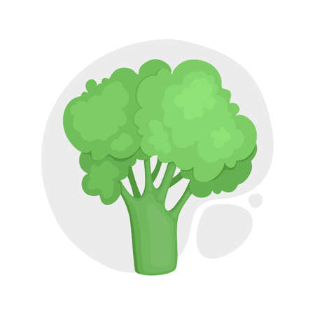 Broccoli with stalks and tops. Composition with brocoli with lush heads and stems. Cartoon realistic style. Fresh healthy vegetarian food. Drawn vector illustration of veggies isolated on white