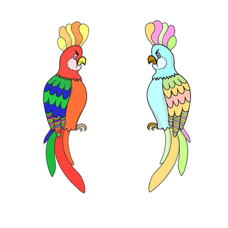 A Vector illustration of two parrots of different coloring Illustration