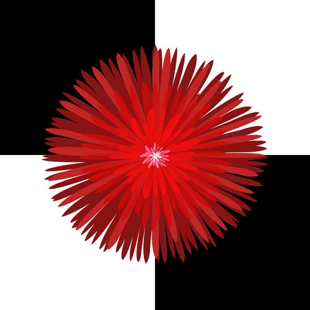 semitransparent: Bright red glowing chrysanthemum on a black and white checkered field