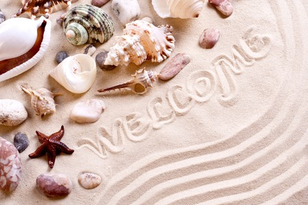 seashells in sand with text as a background Stock Photo