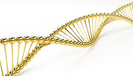 DNA golden model on a white background
