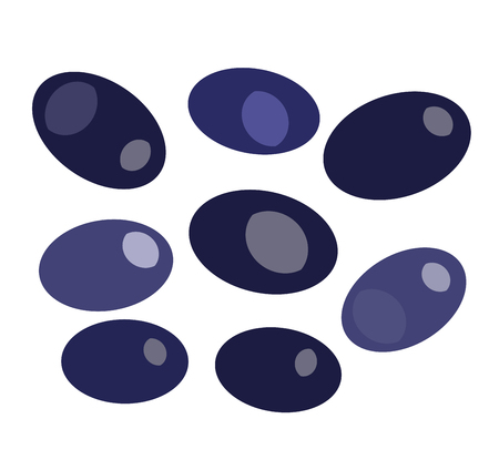 mediterranean diet: Black olives isolated on white backround vector illustration. Olive for food. Olive vector flat modern style. Some olive illustration