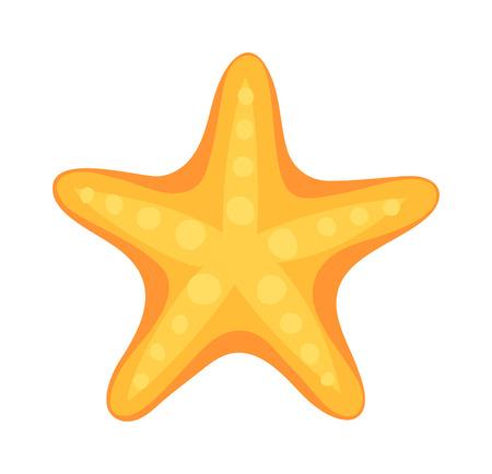 Sea star caribbean starfish on a white background. Coral aquatic sea star and vector cartoon sea star fish. Starfish tropical nature animal sea star and life mollusk underwater sea star.