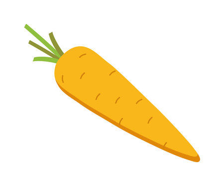 carrot isolated: Cartoon carrot vegetable with leaves isolated on white background. Carrot food isolated and orange healthy carrot. Carrot raw ripe root and fresh carrot green plant. Carrot agriculture stem vegetable