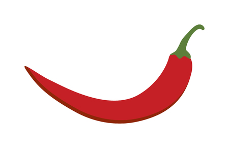 red pepper: Red chili pepper isolated white background and red pepper vector vegetable. Red pepper healthy paprika and red pepper hot ingredient chili. Vitamin red pepper diet mexican red pepper. Illustration