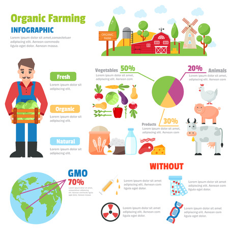 organic farm: Infographic health care heart organic farm shape template design. Organic farm route to healthy concept vector illustration. Organic farm graphic web gardening design vegetarian agricultural field.