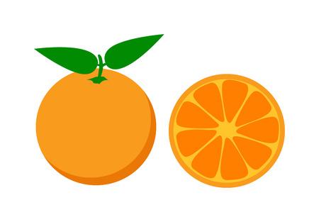 sliced fruit: Ripe fresh orange on white background. Orange isolated sliced fruit and juicy vitamin orange isolated vector. Orange isolated health fruit, zero calories. Refreshment diet exotic dessert. Illustration