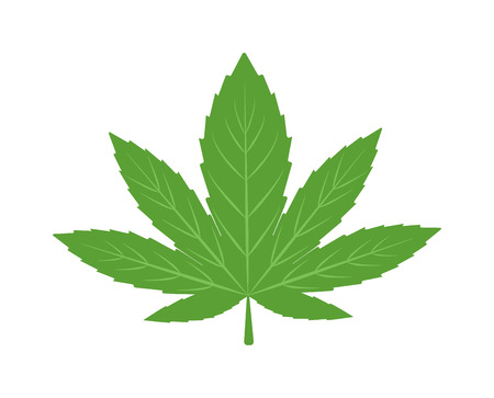hashish: Cannabis marijuana hemp leaf flat icon vector green medicine weed vector herb. Addiction medical narcotic cannabis marijuana leaf. Nature symbol illegal hashish ganja cannabis marijuana leaf.