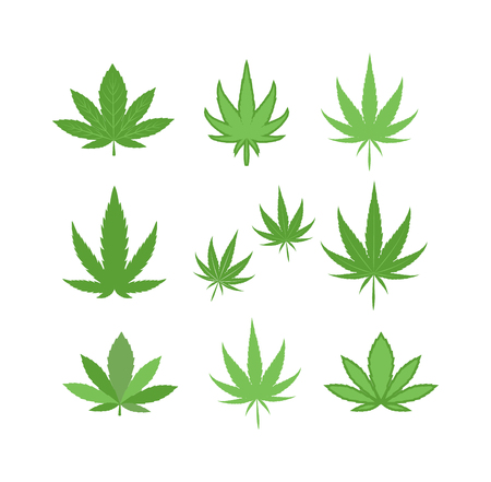 Cannabis marijuana hemp leaf flat icon vector green medicine weed vector herb. Addiction medical narcotic cannabis marijuana leaf. Nature symbol illegal hashish ganja cannabis marijuana leaf.