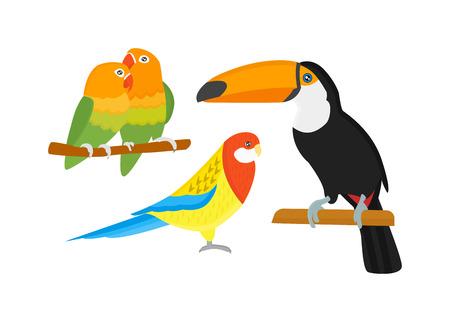 guacamaya caricatura: loros y papagayos de dibujos animados conjunto pájaros animal salvaje. loros tropicales de la pluma de las aves de zoo fauna tropical Macaw Ara volando. dibujos animados Vaus aves exóticas establecidas con los loros ilustración vectorial Vectores