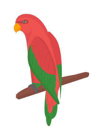 guacamaya caricatura: Cartoon parrots bird and parrot wild animal bird. Tropical parrot feather zoo birds tropical fauna macaw flying ara. Various cartoon exotic bird with parrots illustration vector