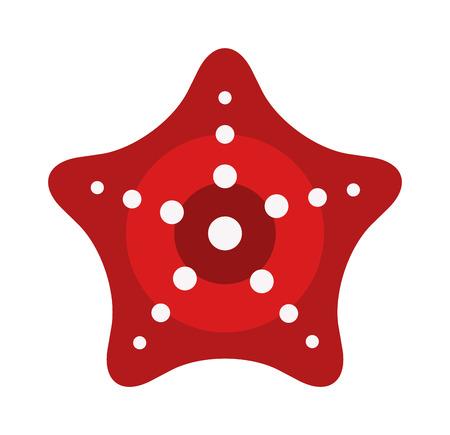 mollusk: Caribbean starfish mollusk on white background. Marine nature beach animal sea star. Underwater life shell summer aquatic fish sea star. Aquarium red animal, travel reef invertebrate. Illustration