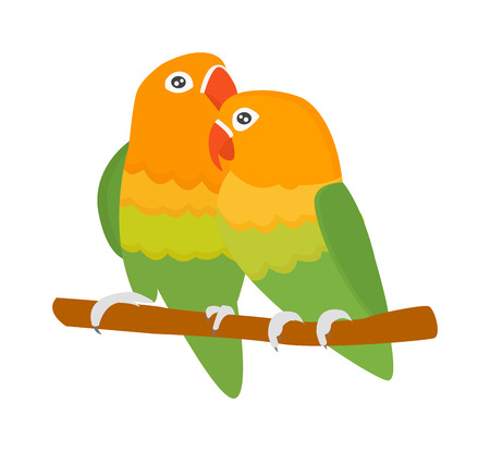 guacamaya caricatura: Cartoon parrots birds and parrots wild animal birds. Tropical parrots feather zoo birds tropical fauna macaw flying ara. Various cartoon exotic birds set with parrots illustration vector Vectores