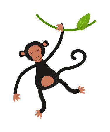 jungle jumping: Cartoon monkey vector illustration. Monkey animal and jungle cartoon wild life. Monkey cute types cute primate isolated. Monkey zoo jumping chimpanzee mammal.