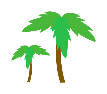 lush foliage: Green coconut palm icon isolated on white background. Palm icon isolated vector and green palm icon isolated. Isolated green summer tree plant nature and tropical palm isolated