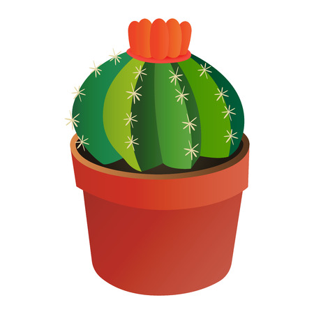 dry flowers: Green desert plant nature cartoon cactus and mexican summer cute cartoon cactus home plant. Cartoon cactus tropical plant traditional west flower. Cute cartoon cactus flat nature vector illustration.