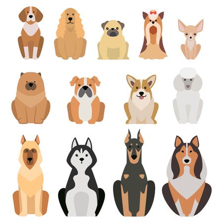 Ilustración vectorial de los perros de razas diferentes aislados sobre fondo blanco. perros planos se reproducen icono del vector, perros planas raza vector aislados. raza de perro silueta plana