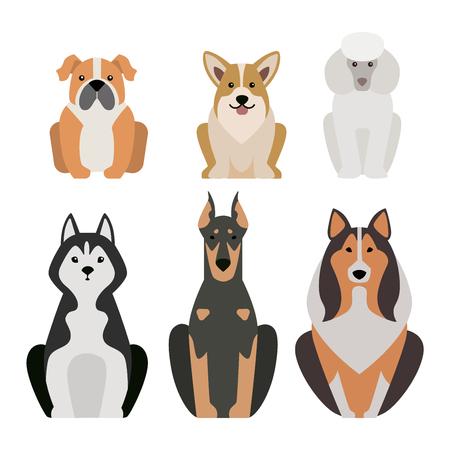 Ilustración vectorial de los perros de razas diferentes aislados sobre fondo blanco. perros planos se reproducen icono del vector, perros planas raza vector aislados. raza de perro silueta plana Ilustración de vector