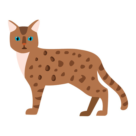 playful: Leopard catcartoon style vector silhouette. Cute domestic cat animal sitting. Cartoon leopard cat young adorable tail symbol playful. Cartoon funny domestic pussy kitty leopard cat sit character