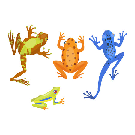 croaking: Frog cartoon tropical animal and green frog cartoon nature icons. Funny frog cartoon collection vector illustration. Green, wood, red toxic frogs flat syle isolated on white background Illustration