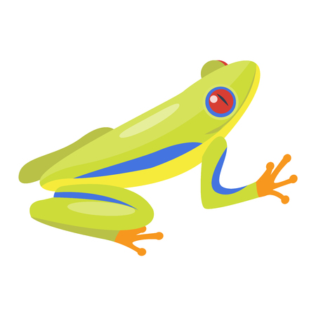 bullfrog: Frog cartoon tropical animal cartoon nature icon. Funny frog cartoon vector illustration. Some frog flat syle isolated on white background